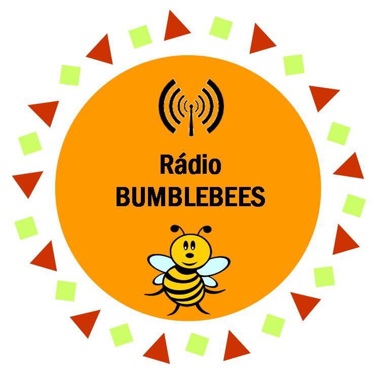Program vysílání